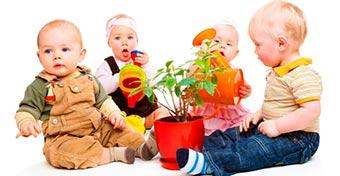 Vigyázz a babára veszélyes, mérgező szobanövényekkel!