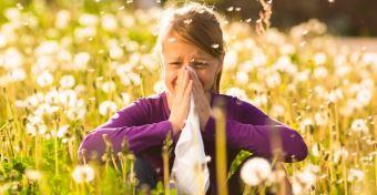 Allergi�soknak rossz h�r: er�s�dik a pollenszezon