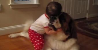 Szívmelengető pillanat: egy baba és egy kutya első ölelése