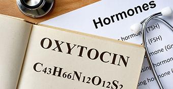 Az oxitocin jelent�s�ge