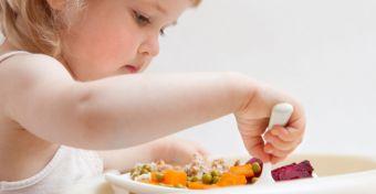 Receptek szója-, tojás-, tej- és lisztallergiásoknak