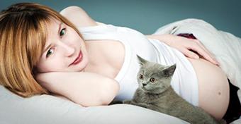 Kell-e tartanunk terhesség alatt a macskáktól?