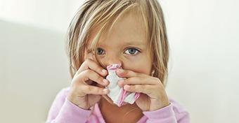 Háziporatka-allergia: mit lehet tenni ellene?