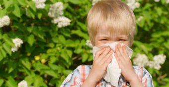 Allergia-gyorsseg�ly