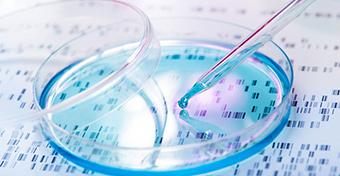 Őssejtekkel visszafordítható az agyvérzés okozta károsodás