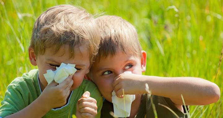 Allergiaszezon: 5 tipp szakemberektől