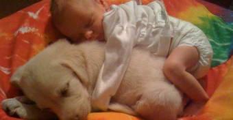 Ezért jó, ha van háziállat a baba mellett