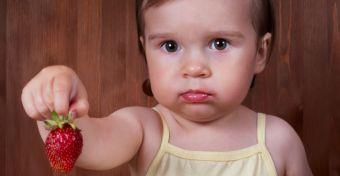 A táplálékallergia