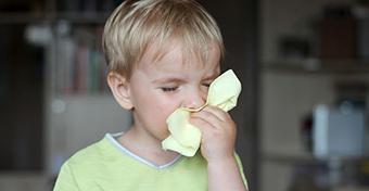 Viharos időben az allergiások maradjanak otthon