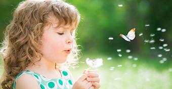 Egyre kisebb a pollenek szerepe az allergiában