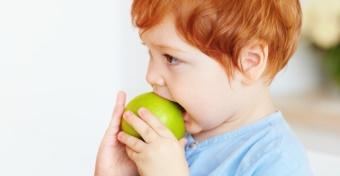Tippek egy Montessori tanítótól, ha a gyerek harap