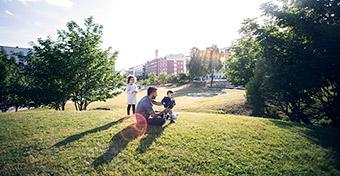 A városi parkokban is sok a kullancs