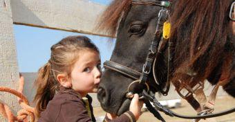 Enikőnek a lovak segítették a fejlődését