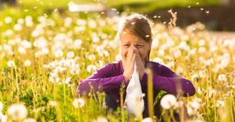 Asztma és szénanátha együtt járhat