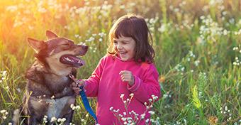 A kutya a gyerek legjobb barátja?