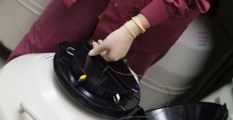Fagyasztott embrió révén könnyebb teherbe esni?