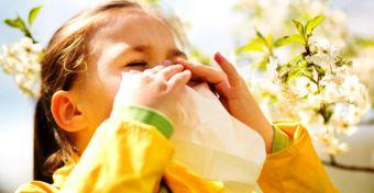 Légúti allergia tünetei és kezelése gyerekeknél