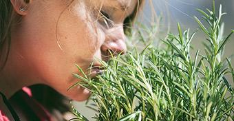 Infektológus: a legelső tünet a szaglás elvesztése