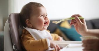 Ezek az ételek segíthetik a baba agyi fejlődését