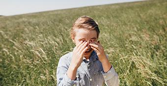 Mi az a pollen-pollen keresztallergia?