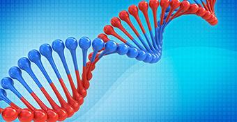 A gének rejtélyes üzenete