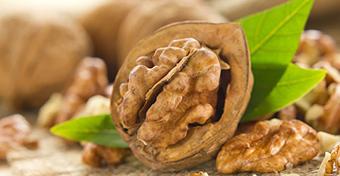 A dió anélkül csökkenti a koleszterinszintet, hogy híznánk tőle