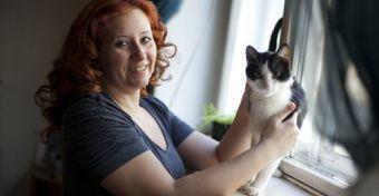 Macska a várandósság alatt: menjen vagy maradjon?
