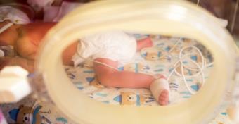 A Honvéd PIC-jén  mindent megtesznek azért, hogy jó legyen a babának