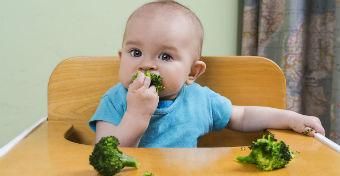 A legjobb kézzel ehető falatok a babának