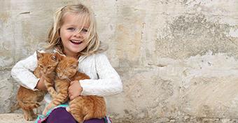 Tényleg veszélyes a macska a gyerek mentális egészségére?