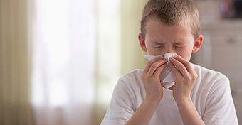Háziporatka-allergiát is jelezhet az elhúzódó száraz köhögés