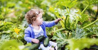 Csak a gyerekek ötöde eszik mindennap zöldséget