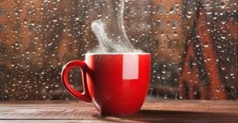 A kávé véd a szklerózis multiplextől?