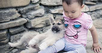 A kutya az ekcémától is védi a gyereket