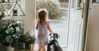 Jó hatással lehet az óvodásra a kutya a családban
