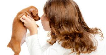 A 10 legjobb fajta, ha kutyát akarsz a gyereknek