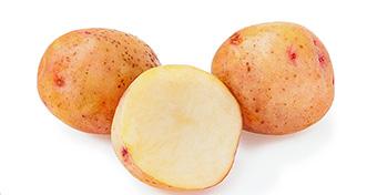 A krumplitól remélnek megváltást az oltásellenesek