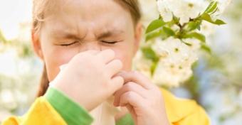 5 jel, hogy ideje allergológushoz fordulni