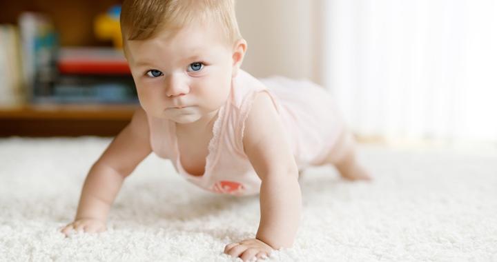 A baba fejlődése - A 8. hónap történései