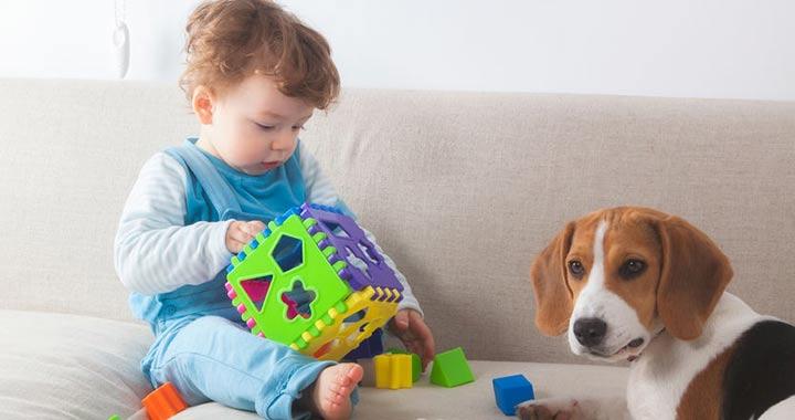 Készségfejlesztő játékok 6 hónapos kortól