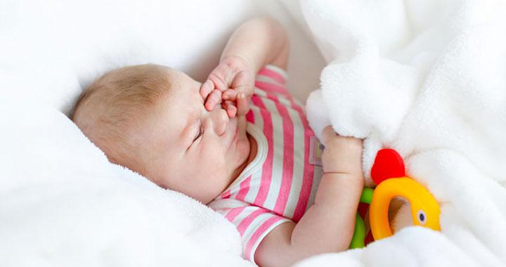 A baba fejlődése - A második hónap történései