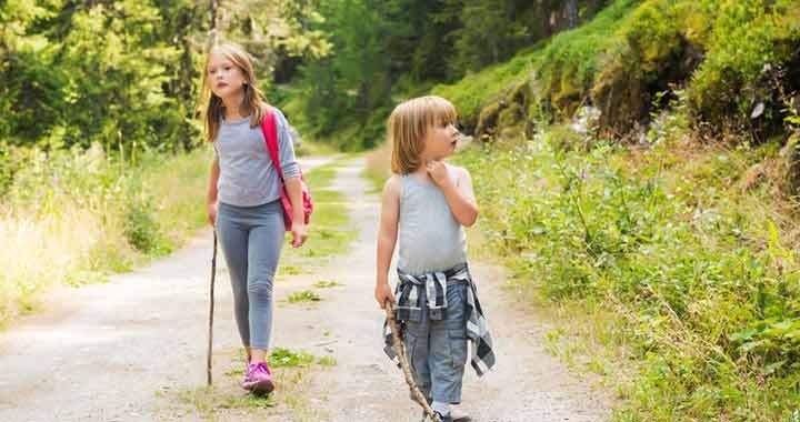 A természet lágy ölén táboroznak a fiatalok a Zselicben - Er - Országos Erdészeti Egyesület