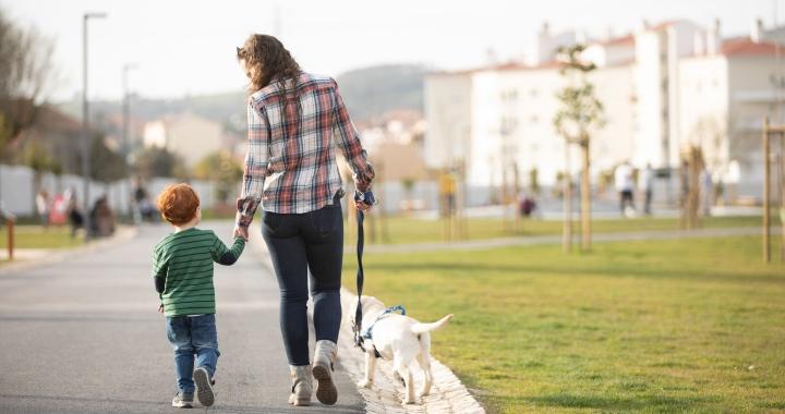 Ennyi minden fejleszthető séta közben a gyerekkel