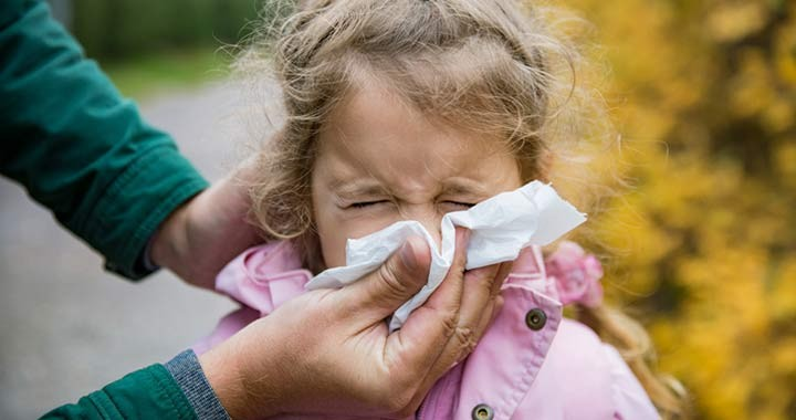 Poratka allergia jele is lehet az állandó orrdugulás