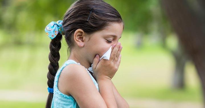 Nő a parlagfű pollenkoncentrációja, erősödhetnek a tünetek