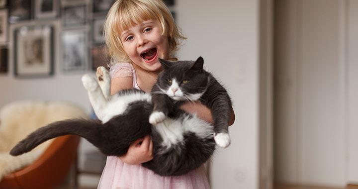 Kitiltják a nyolc évnél fiatalabb gyerekeket a macskakávézóból