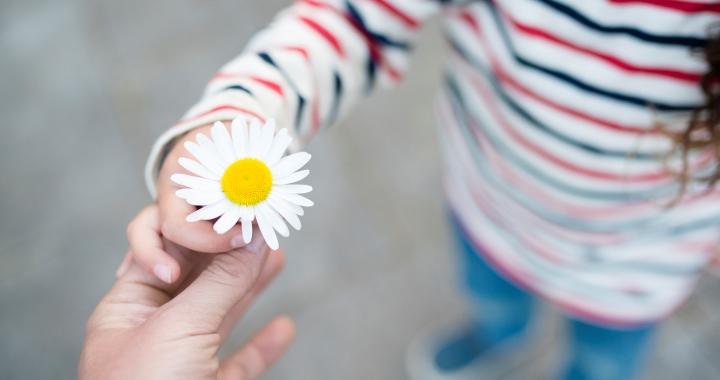 Ez az első lépés, hogy boldog legyen a gyerek